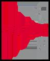Vivid Touch Logo